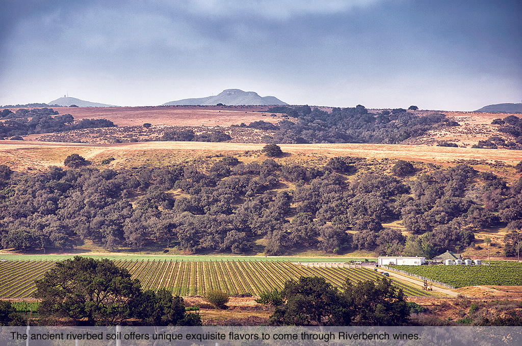The ancient riverbed soil offers unique exquisite flavors to come through Riverbench wines.