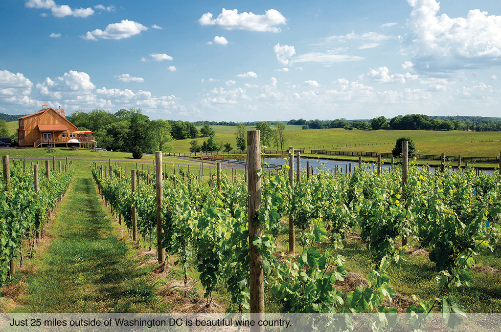 Just 25 miles outside of Washington DC is beautiful wine country.