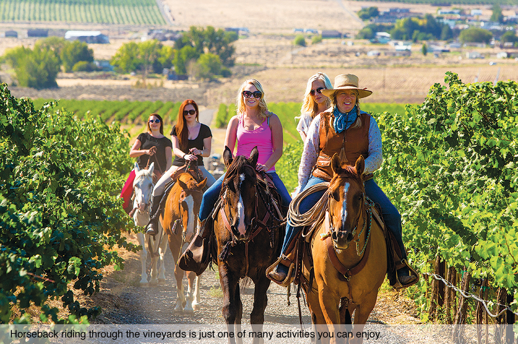 Horseback riding through the vineyards is just one of many activities you can enjoy.
